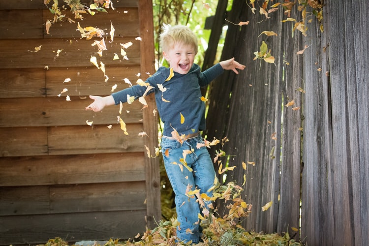 little boy enjoying fall and jumping in leaves.+--