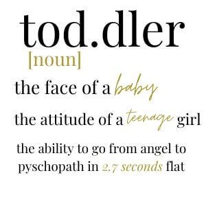 funny jokes about todlers