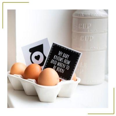eggs in a carton pregnancy reveal